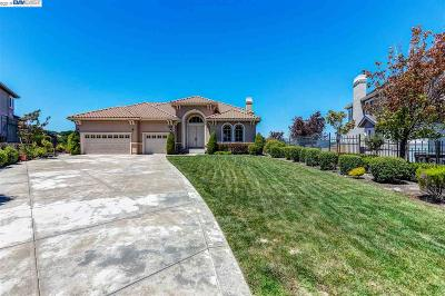 San Ramon Single Family Home For Sale: 824 Henley Ct