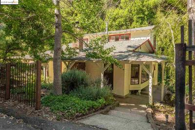 Castro Valley Single Family Home For Sale: 5933 E Castro Valley Blvd