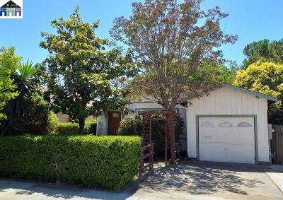 Hayward Single Family Home For Sale: 29183 Dixon