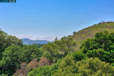 Moraga Residential Lots & Land For Sale: 1267 Bollinger Cyn