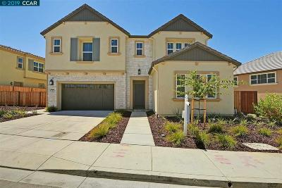 Dublin Single Family Home For Sale: 7087 Tecopah Hills Way