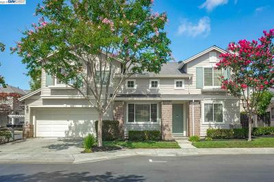 Fremont Single Family Home For Sale: 4041 Hemingway Common