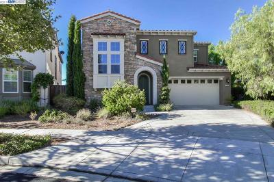 San Ramon Single Family Home New: 3489 Ironwood Dr