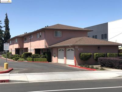 Hayward Multi Family Home Active-Reo: 19865 Meekland Ave