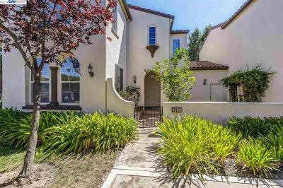 San Ramon Condo/Townhouse New: 2035 Cedarwood Loop