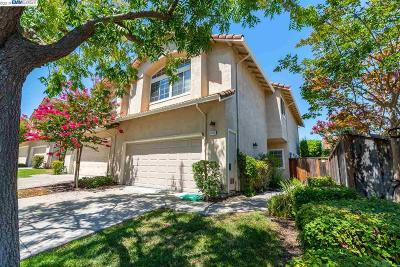 Pleasanton Condo/Townhouse New: 4252 Garibaldi Pl