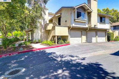 San Jose Condo/Townhouse New: 644 Easton