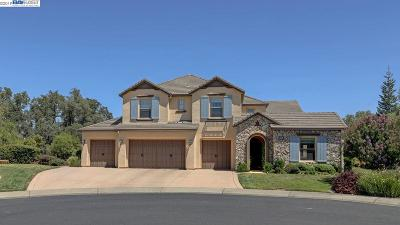 El Dorado Hills Single Family Home New: 5001 Piazza Pl