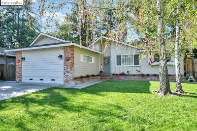 Concord Single Family Home For Sale: 837 Tully Way