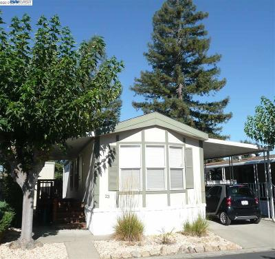 Pleasanton Mobile Home New: 3231 Vineyard Ave., #23