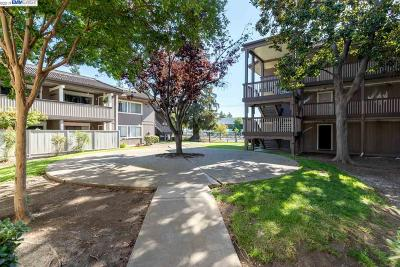 Fremont Condo/Townhouse New: 47112 Warm Springs Blvd #109