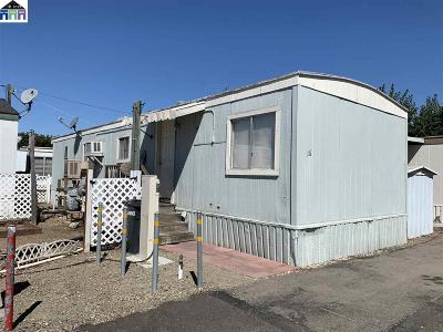 Livermore Mobile Home New: 828 Olivina Ave