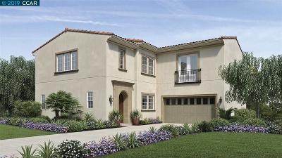 San Ramon Single Family Home New: 784 Roseum Court