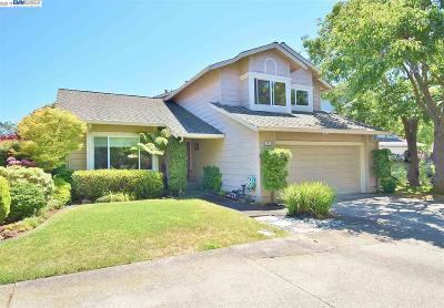Alameda Single Family Home New: 8 Balleybay
