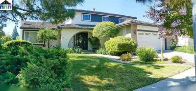 Cupertino Single Family Home New: 21528 Rosario Avenue