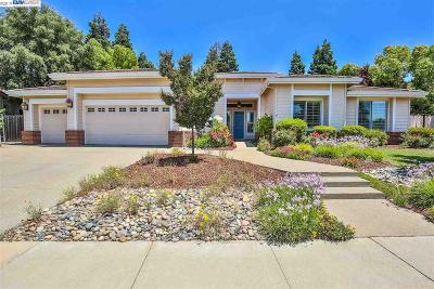 Livermore Single Family Home New: 1756 Valley Of The Moon Rd