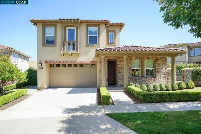 San Ramon Single Family Home New: 5425 Waterlily Dr