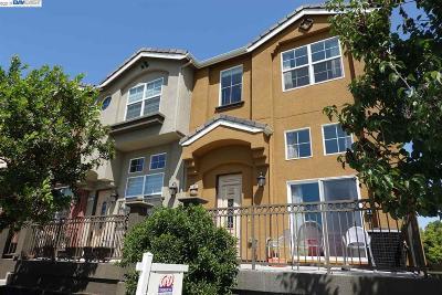 Fremont Condo/Townhouse New: 41959 Cerchio Ter