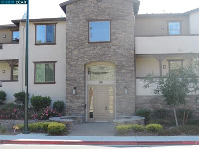 Walnut Creek Condo/Townhouse For Sale: 1281 Homestead Ave. #2 E