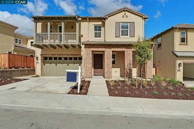 Dublin, Pleasanton, Alamo, Danville, Orinda, San Ramon Single Family Home For Sale: 2817 Tulare Hill Dr