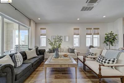 Dublin Single Family Home New: 5810 Noba Rd