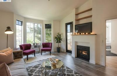 Oakland Condo/Townhouse New: 260 Caldecott Ln #306