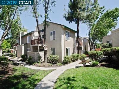 Antioch Condo/Townhouse New: 2005 San Jose Dr #155
