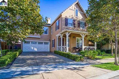 Mountain House Single Family Home New: 372 S Paraiso Way