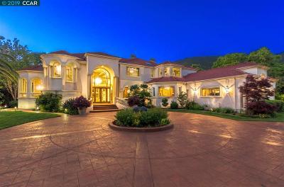 Danville Single Family Home For Sale: 3118 Blackhawk Meadow Lane