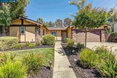 Walnut Creek Single Family Home For Sale: 1840 Argonne Dr