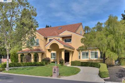Danville Single Family Home For Sale: 5451 Blackhawk Drive