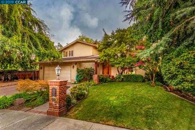 Walnut Creek Single Family Home For Sale: 245 Tamarisk Drive