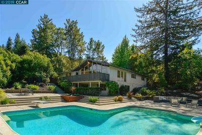 Lafayette Single Family Home For Sale: 3838 Palo Alto Dr.