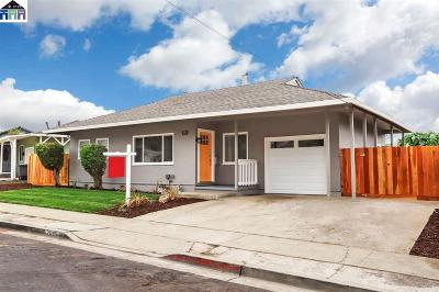Hayward Single Family Home New: 26571 Colette St