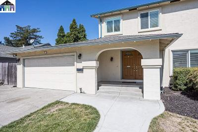 San Ramon Single Family Home New: 54 Hazelnut Ct