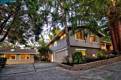 Orinda Single Family Home New: 1 Aghalee Rd