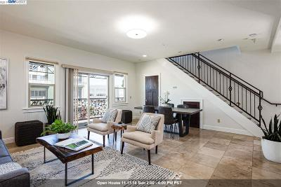 Oakland Condo/Townhouse New: 2217 Curtis St