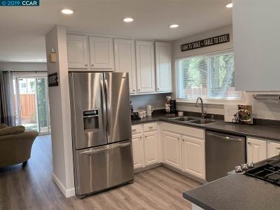 Martinez Single Family Home New: 350 Shadowfalls Ct