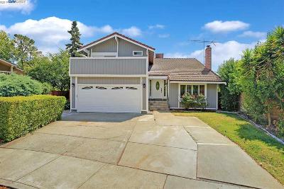 Pleasanton Single Family Home New: 3120 Cranwood Ct
