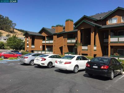 San Ramon Condo/Townhouse New: 204 Stone Pine Lane