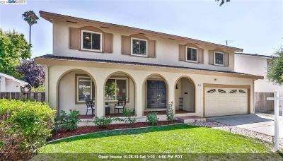 Pleasanton Single Family Home New: 4114 Fairlands Drive