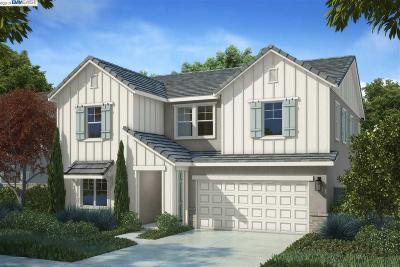 Oakley Single Family Home New: 844 Riverrock Drive