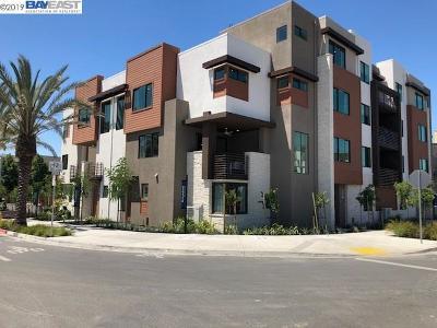Dublin Condo/Townhouse New: 5871 Cadence Avenue