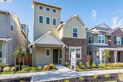 Dublin Single Family Home New: 7254 Mount Veeder Rd