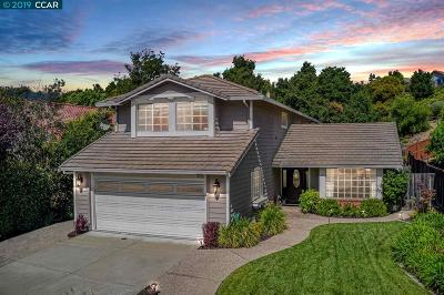 Castro Valley Single Family Home New: 19052 Mount Lassen Dr