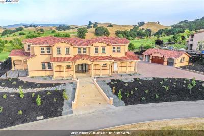 Pleasanton CA Single Family Home New: $3,999,000