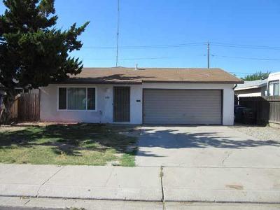 Manteca Single Family Home For Sale: 615 Connie Court