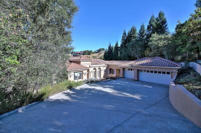 Orinda Single Family Home For Sale: 99 Tiger Tail Court