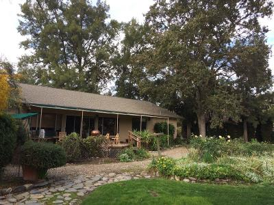 Pleasanton Single Family Home For Sale: 6300 Alisal Street