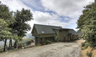 Los Gatos Single Family Home For Sale: 30003 Summit Road